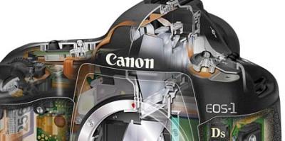 Canon 1Ds mark III, baumas