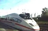 Vilcienu sērfotājs