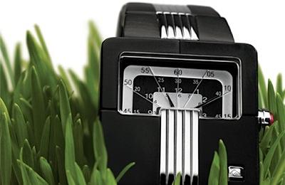 Zaļais pulkstenis