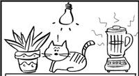 Kaķu signalizācija