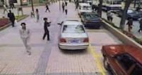 Parkošanās īpatnības