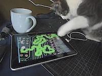 Apple iPad? Priekš kaķiem