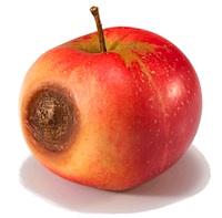 Atklātas spiegošanas programmas priekš Mac